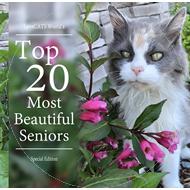 Senior Cats Special Edition