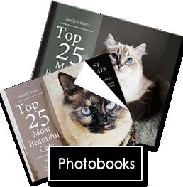 2021 Photobook