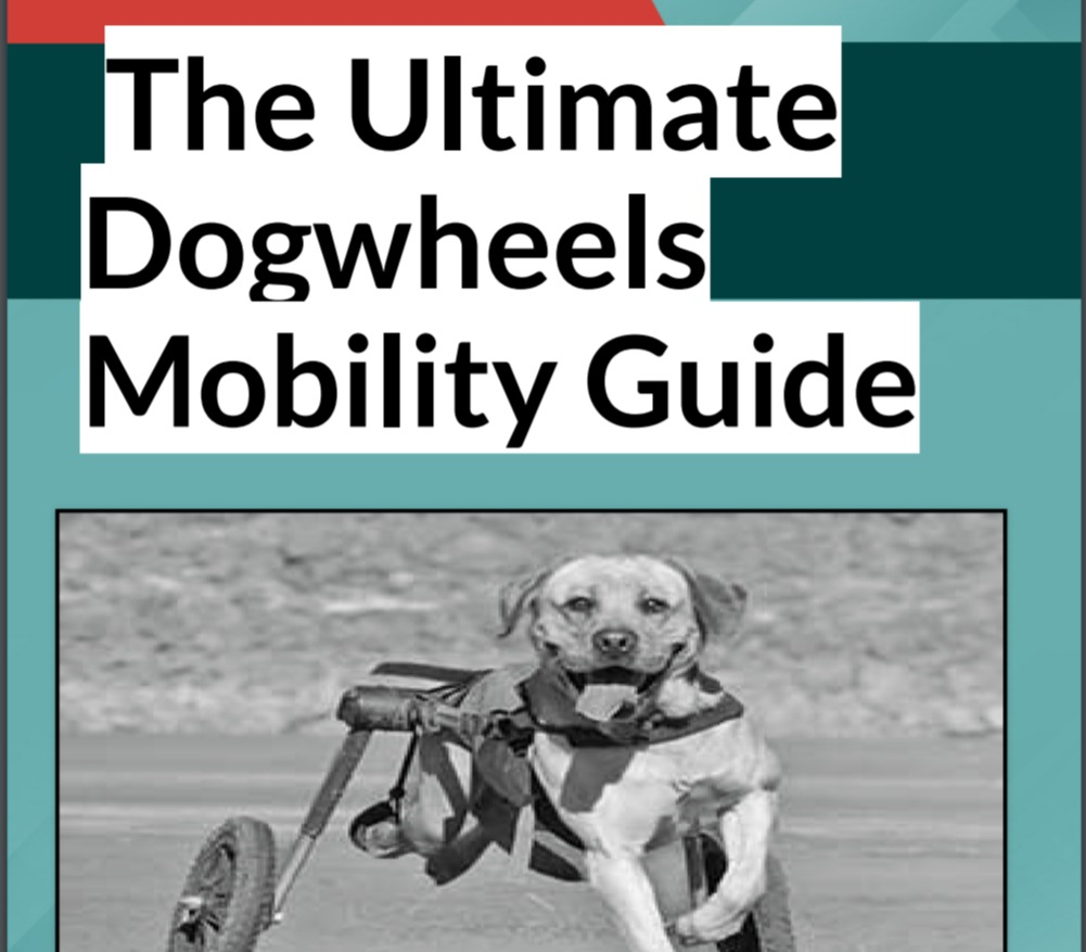 Dog Wheels Mobility Guide